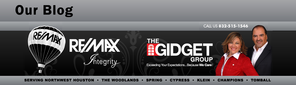 The Gidget Group